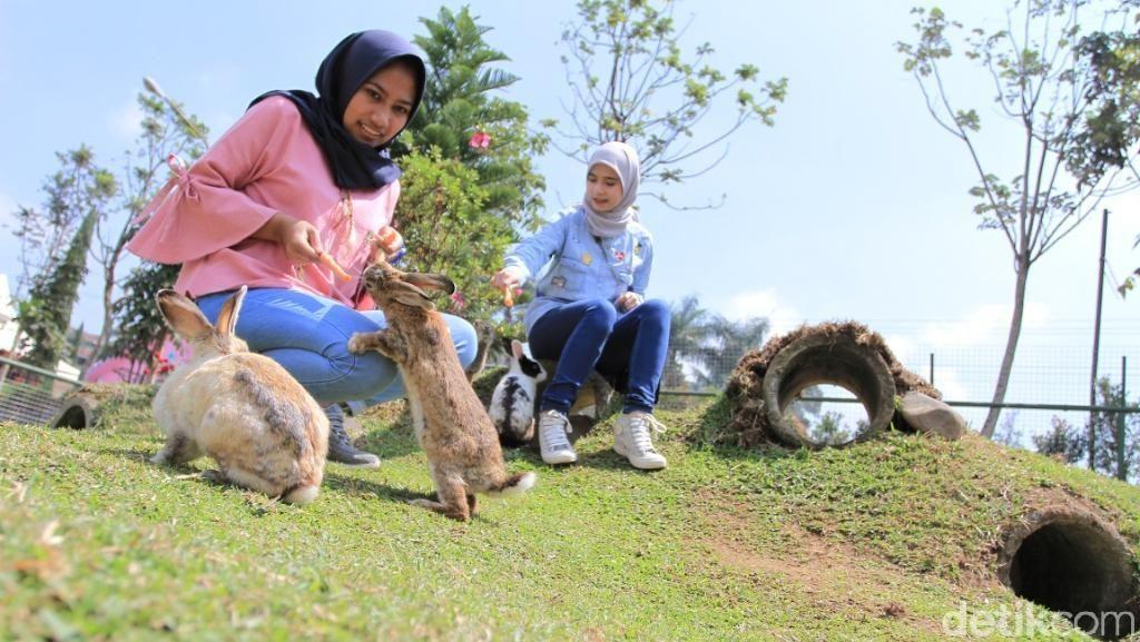 Destinasi Baru dari Bandung, Pulau Kelinci Hingga Rumah Permen