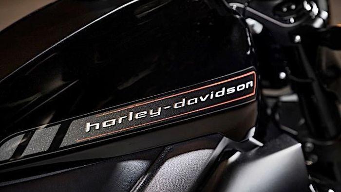 Harley Davidson/Foto: Pool (Autoevolution)