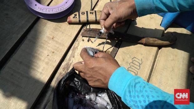 Memancing Ikan dengan Cara Tradisional di Pelabuhan Ratu