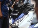 Inden Honda Forza Mencapai 6 Bulan