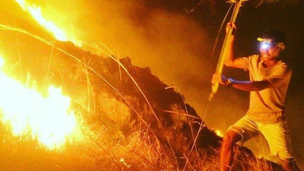 Wisatawan Asing Diperiksa dalam Kasus Kebakaran Gili Lawa
