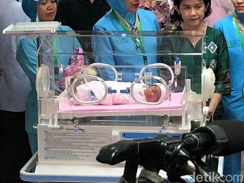 So Sweet, Momen Suami Kahiyang Ayu Gendong Cucu Kedua Presiden Jokowi