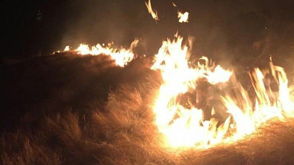 Fakta-Fakta Kebakaran di Gili Lawa