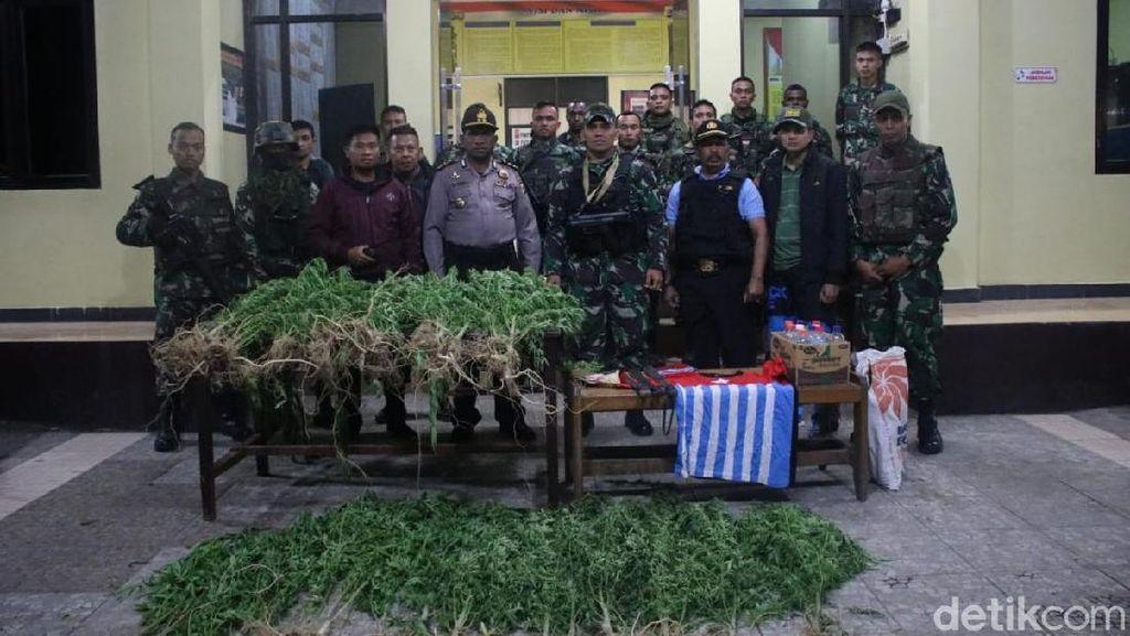 Polisi dan TNI Tangkap Bandar Ganja Beratribut OPM di Wamena