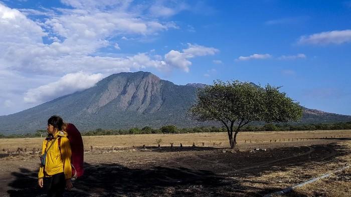 Banyuwangi memiliki tempat wisata eksotis bernama Taman Nasional Baluran. Taman nasional ini menawarkan kehidupan alam yang bebas layaknya di Afrika. Penasaran?