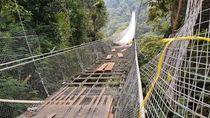 Walhi Jabar Kecam Pembangunan Jembatan Gantung Situgunung