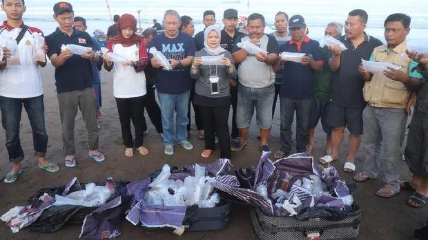 30 Ribu Benih Lobster Selundupan Dilepas Kembali