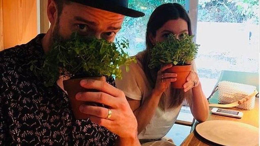 Mampir ke Restoran Molecular Gastronomy, Justin Timberlake Makan Pot Tumbuhan
