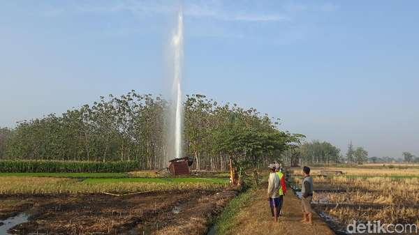 Fakta Fenomena Semburan Air 30 M di Ngawi