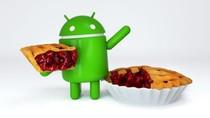 Ponsel Samsung Baru Bisa Cicipi Android Pie Tahun Depan
