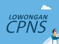 Lowongan CPNS 2019 Dibuka Akhir Oktober, Bea Cukai Bongkar Jastip