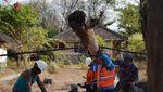 Begini Perjuangan PLN Pulihkan Listrik di Lombok