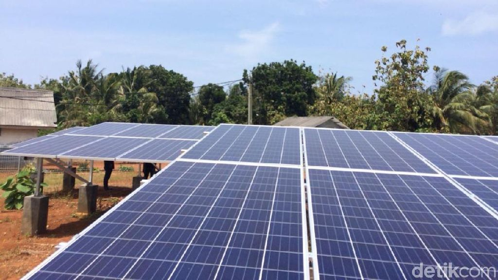 Operator Kebun Matahari di Pulau Parang Masih Terkendala Bahasa