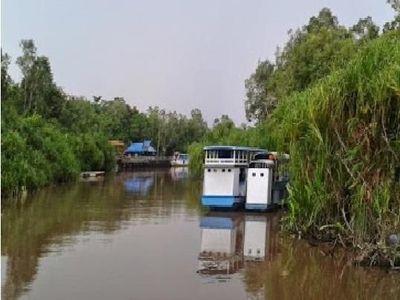 Halo Taman Nasional Tanjung Puting!