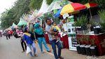 Melihat Keseruan Festival Cipedak 2018