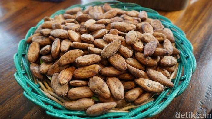 Pada 100 gram cokelat menggunakan setidaknya 1.700 liter air. Produksi cokelat atau kakao sangat mengandalkan air hujan dengan besaran water footprint 98 persen. Foto: Devi S. Lestari / detikFood