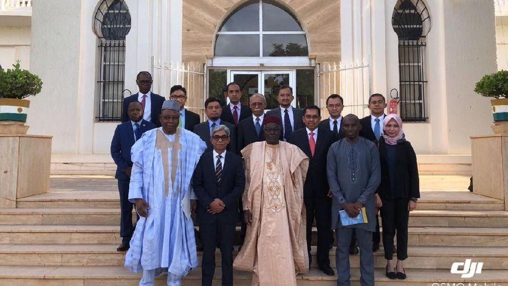 Bangga! BUMN RI Bangun Istana Presiden Niger Rp 370 M