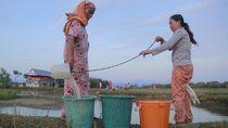 Potret Warga Sulsel Berburu Air di Empang Bersaing dengan Bebek
