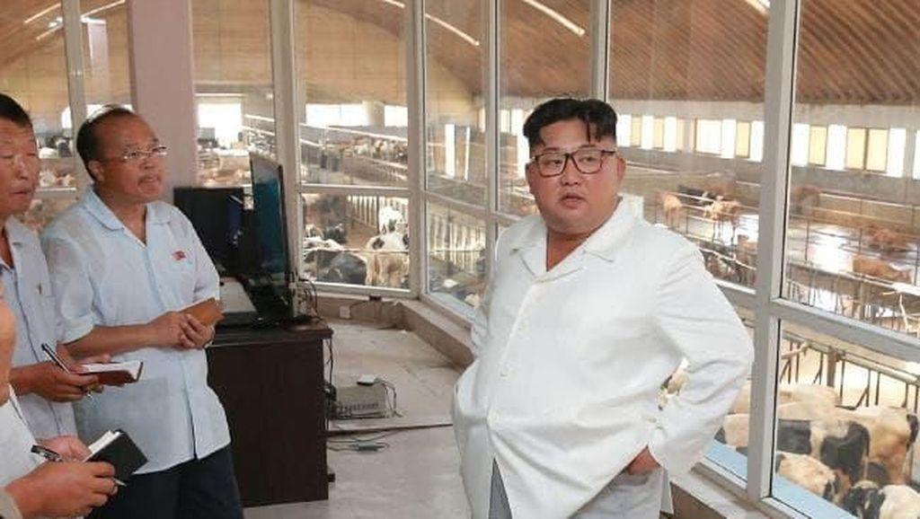 Tampilan Baru Kim Jong-Un yang Lebih Santai dan Kasual