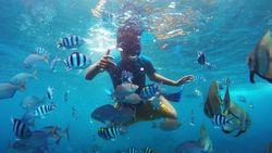SAR Terus Cari WN China yang Hilang Saat Snorkeling di Gili Air