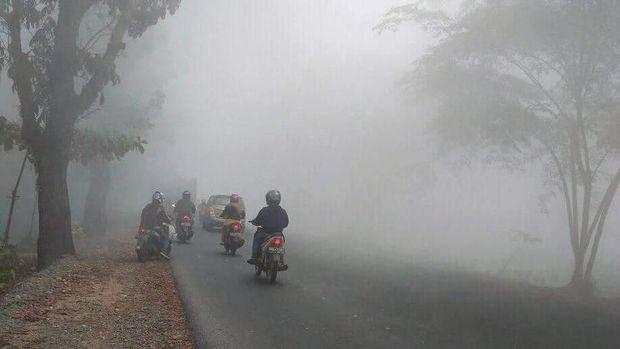 Kebakaran Hutan di Kalbar, Pemerintah Diminta Buat Rekayasa Cuaca