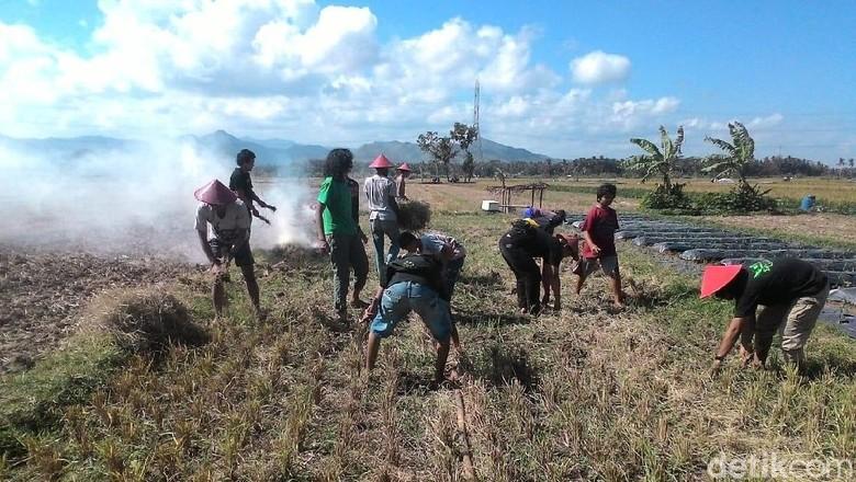 19 KK Masih Bertahan di Area Proyek Bandara Kulon Progo