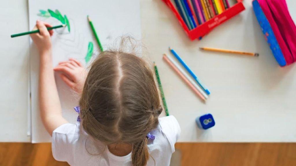 6 Fakta Menarik tentang Anak Kidal