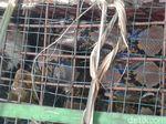 Ular Sanca 3 Meter Kagetkan Petani di Banjarnegara