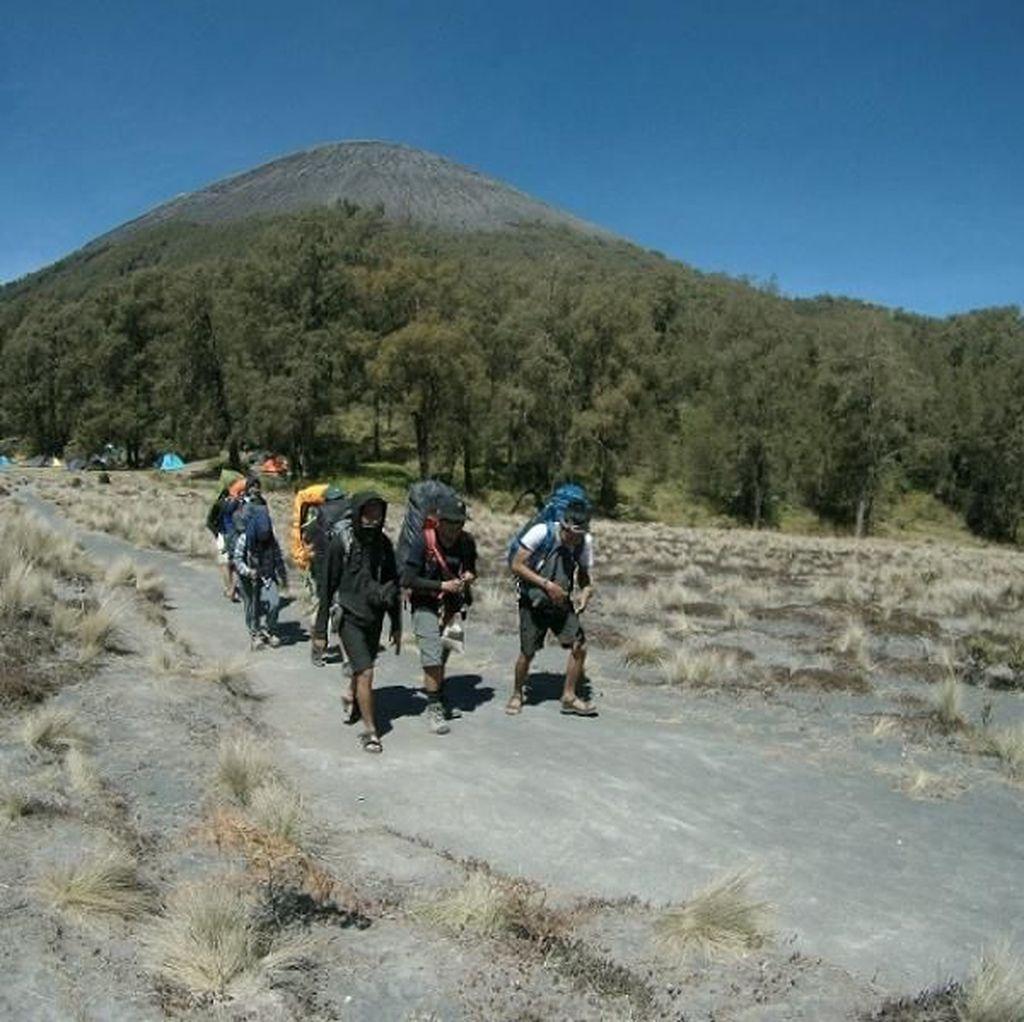Wah, Kuota Pendaki Gunung Semeru untuk 17 Agustus Sudah Full
