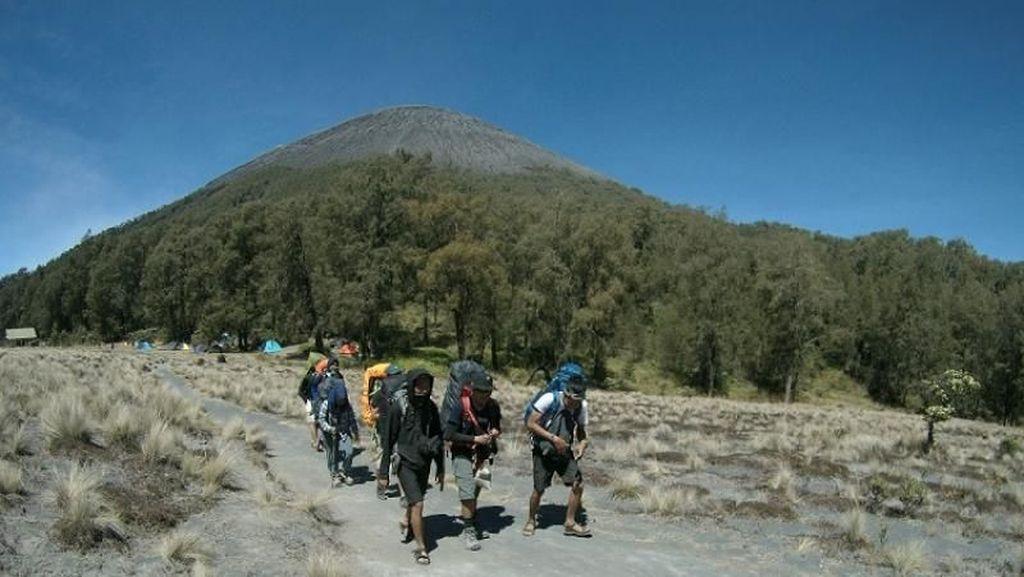 Perjuangan Selamatkan Pendaki di Blank 75, Semeru