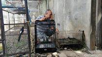 Tolak Permen LHK, Begini Curhat Kicau Mania di Purworejo