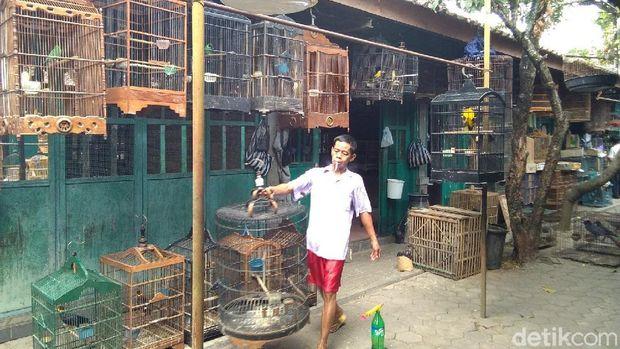 Suasana Pasar Satwa dan Tanaman Hias Yogya