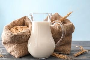 Susu Gandum Kian Digemari Karena Punya 5 Hal Ini