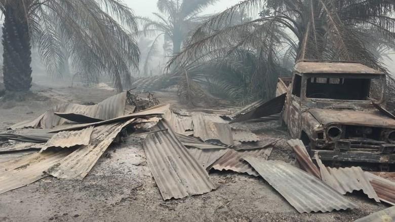 Ngerinya Kebakaran Lahan Sawit yang Hanguskan 20 Rumah Warga