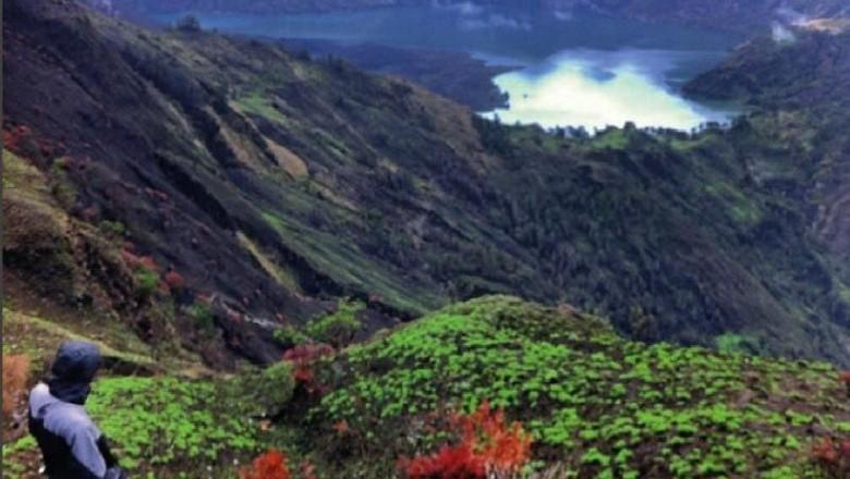 Longsor di Bukit Kaki Gunung Rinjani, 1 Warga Syok