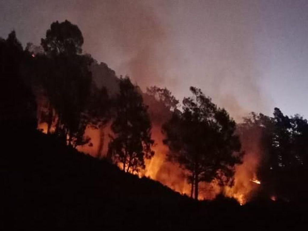 Hutan di Gunung Panderman Terbakar, 100 Pendaki Dievakuasi