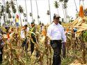 Mentan: Anggaran 2019 Dirancang untuk Kepentingan Petani