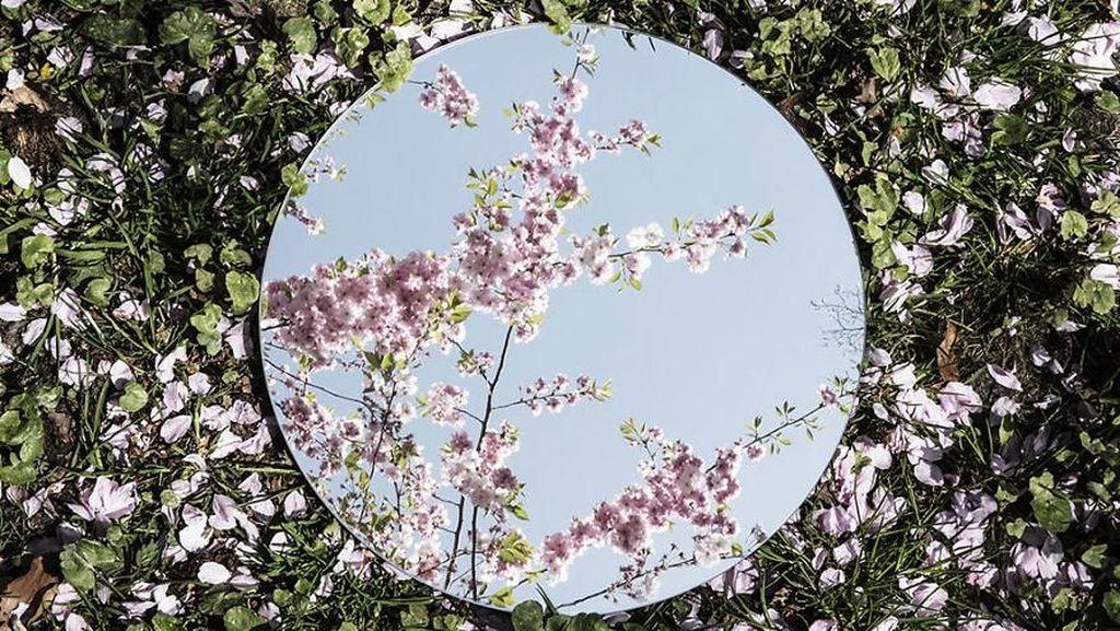 Menikmati Keindahan Alam Melalui Refleksi Cermin