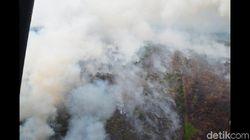 5 Orang Ditangkap Polisi Terkait Kebakaran Hutan di Kalbar