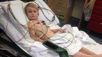Bocah Empat Tahun Selamat Walau Digigit Ular Berbisa Mematikan