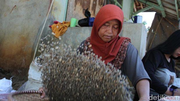 Produksi kopi Arjasari di Bandung