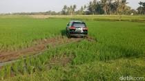2 Korban Tertabrak Mobil Anggota Dewan Banyuwangi Dilarikan ke RS