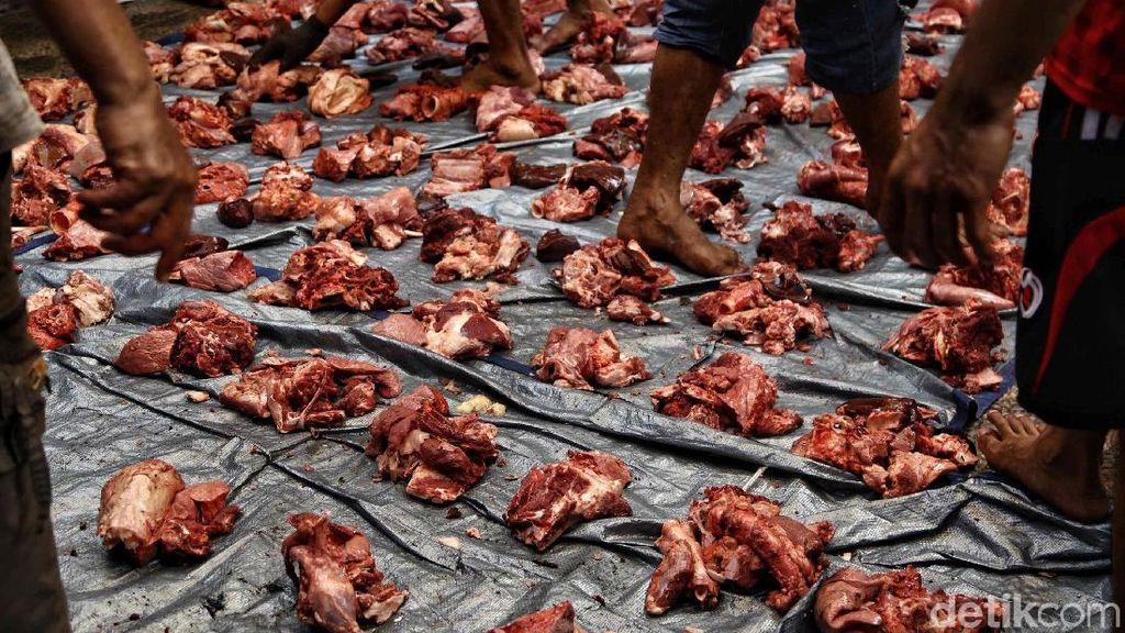 Dapat Jatah Daging Kurban? Ini Tips Membersihkan dan Menyimpan di Kulkas