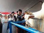 Serahkan Sapi Kurban Jokowi, Ini Pesan Pakdhe Karwo dan Khofifah