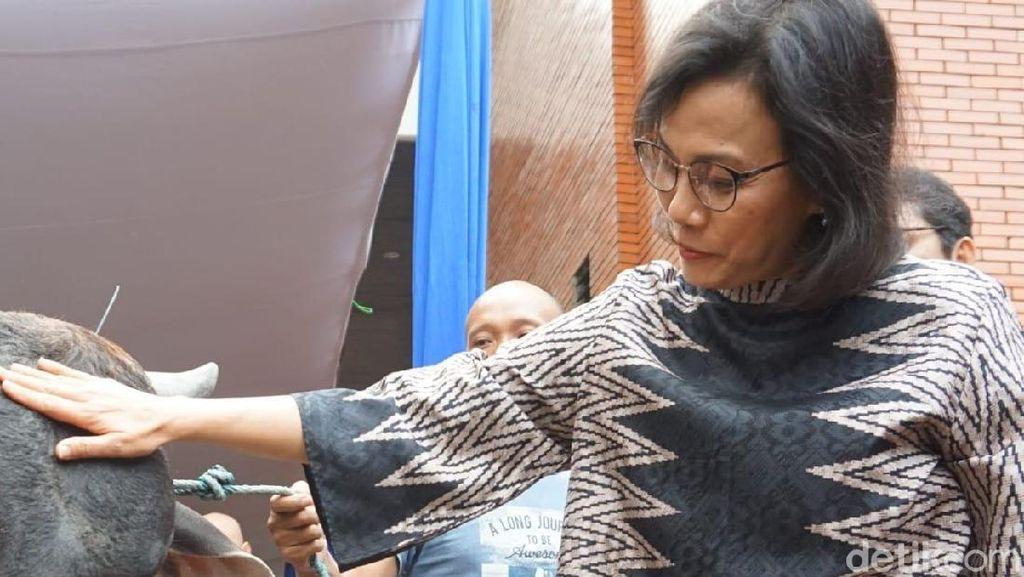 Pakai Batik, Sri Mulyani Saksikan Kurban Sapi di Gedung Kemenkeu