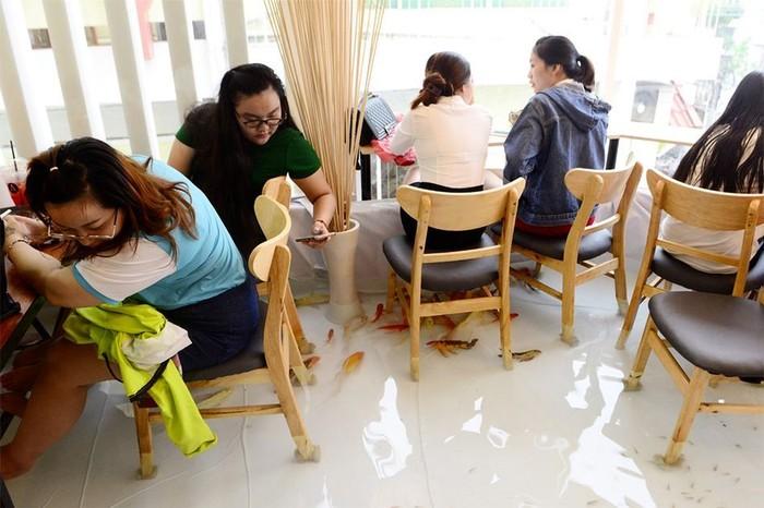 Kafe koi sebenarnya sudah lama jadi tren di Vietnam. Namun kafe milik Nguyen Duoc Hoa berbeda karena benar-benar menghadirkan kolam ikan koi sebagai ruangan bersantap kafe. Foto: Le Quan (Zing)