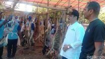 Muslim dari Singapura dan Australia Ikut Berkurban di Grobogan