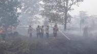 Antisipasi Karhutla, 7.560 Personel Gabungan Siaga di 5 Provinsi