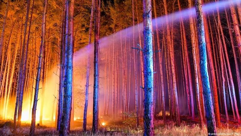 Kebakaran Hutan Terjadi di Dekat Berlin, Ratusan Orang Dievakuasi