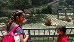 Sedih, Hewan Kebun Binatang Venezuela Kurus Gegara Krisis